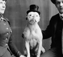 Vintage Black and White Photograph Dog Wearing Hat Sticker