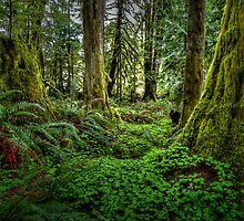 It's All About The Green by Charles & Patricia   Harkins ~ Picture Oregon
