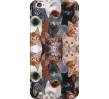 Kittens! OMG. So many kittens! Kittenware! iPhone Case/Skin