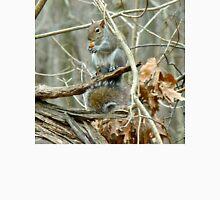 Gray Squirrel - Sciurus carolinensis Unisex T-Shirt