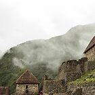 Machu Picchu  by Tess Mitchell