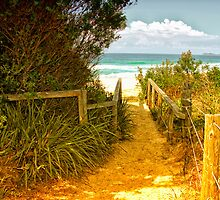 Pathway to Paradise by john NORRIS