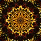 Tiger Iron - Clarity and Expression Mandala by haymelter