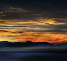 Leaving Vancouver Island by Gail Bridger