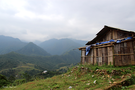 Vietnam's Highlands by joshduth