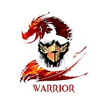 Guild Wars 2 Warrior  Photographic Print