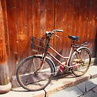 Red Bicycle, found in the water village of Wuzhen, China. by candysfamily