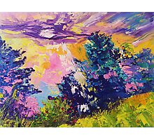 Absstract landscape oil painting. Sunrise by Ekaterina Chernova Photographic Print