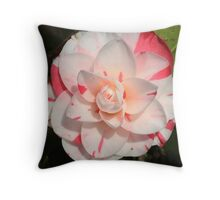 Rasberry ripple? Throw Pillow