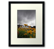 Under Rainclouds Framed Print