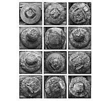 Piling Bolt Study Photographic Print