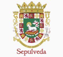 Sepulveda Shield of Puerto Rico Baby Tee