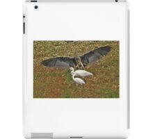 Three Herons iPad Case/Skin