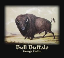 Catlin - Bull Buffalo by William Martin