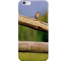 Little Bird on a Log Fence iPhone Case/Skin