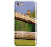 Little Bird on a Log Fence iPhone Case/Skin