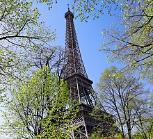 Eiffel Tower by danguf