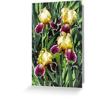 Vingolf Irises Greeting Card