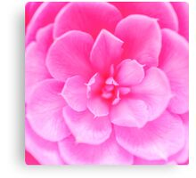 Abstract Pink Rose Canvas Print