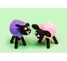 Black Sheeps Photographic Print
