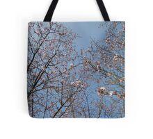 March Blossom (2014)  Tote Bag