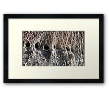 ©NS People Hidden IA Framed Print