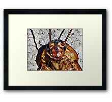 ©NS Sunbathing IA Framed Print