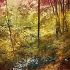 Forbidden Forest by Kathilee