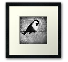 ©NS A Bird IAT Framed Print