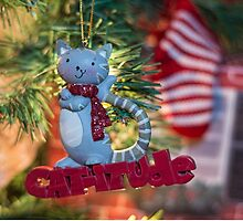 Christmas with Cat-itude! by Tracy Riddell