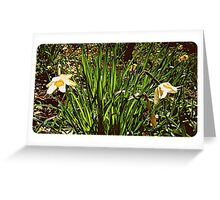 Spring into two... Greeting Card