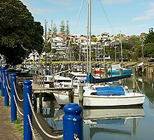 Milford Marina - A Safe Haven.........! by Roy  Massicks