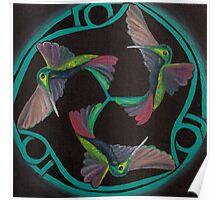 Hummingbird Triskele Poster