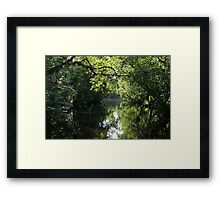 Mysterious Beauty Framed Print