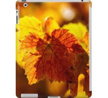 Colorful golden leaves of grape, Alsace iPad Case/Skin