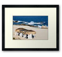 Seaside Cabanas Framed Print