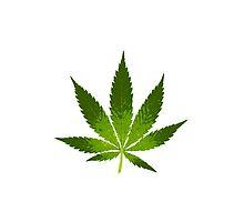 Large Marijuana Leaf by cnstudio