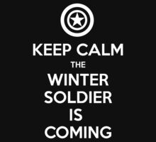 KEEP CALM... The Winter Soldier Is Coming by FallenAngelGM