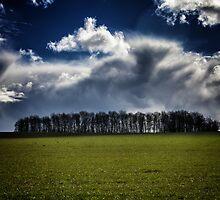 A Storm Is Brewing by darrenflinders1