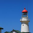Bustard Head Lighthouse. by Peter Doré