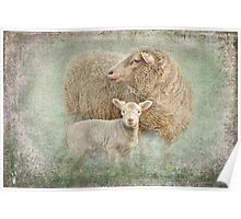 Mother with lamb Poster
