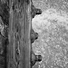 Waves under Piling Bolts by Thomas Pohlig
