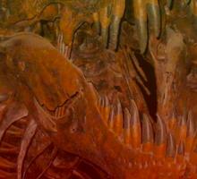 Trippysaurus Rex Sticker