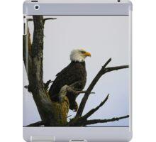 eagle striking a pose iPad Case/Skin