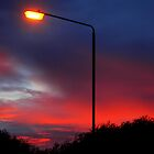 Illuminate by Luke Lansdale