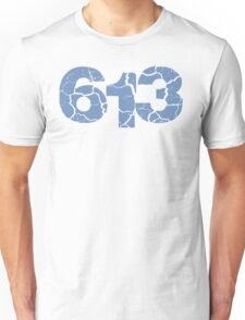 613 CRACK BLUE Unisex T-Shirt