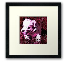Another puppy Framed Print