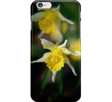 wild daffodils iPhone Case/Skin