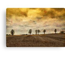gone are our days of happiness.... Canvas Print