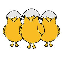3 chicks with eggshell on the head by Style-O-Mat